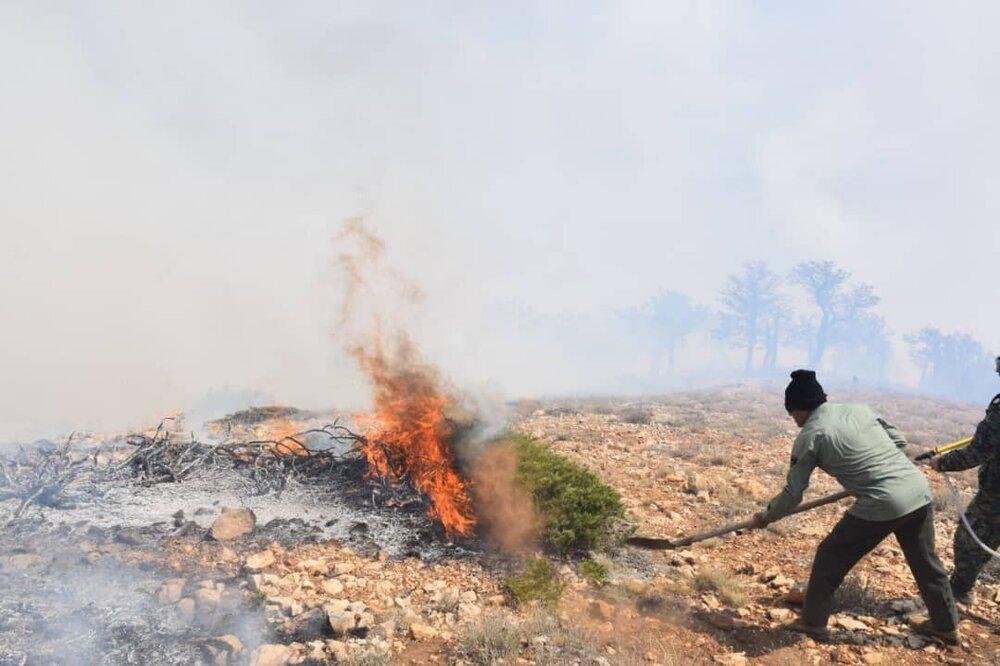 آتش در جنگلهای کردکوی