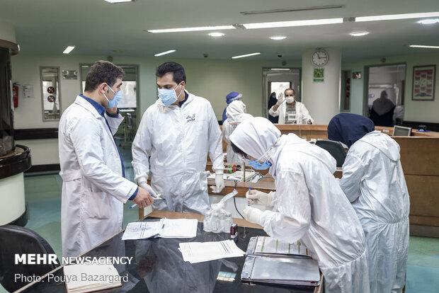 آمار تفکیکی بیماران کرونایی در استان همدان